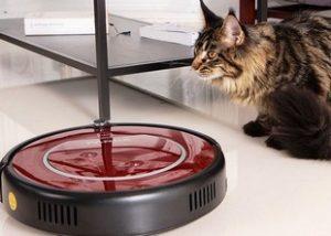 робот пылесос удивляет кошку